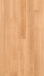 Varnished beech, planks Laminate - UF866