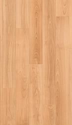 Varnished beech, planks Laminate - UF866